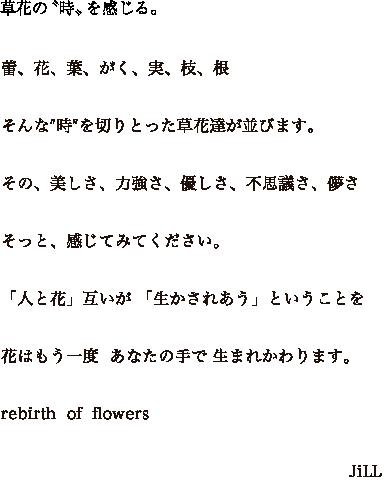 草花の〝時〟を感じる。蕾、花、葉、がく、実、枝、根そんな″時″を切りとった草花達が並びます。その、美しさ、力強さ、優しさ、不思議さ、儚さそっと、感じてみてください「人と花」互いが 「生かされあう」ということを。花はもう一度  あなたの手で 生まれかわります。rebith  of  flowers JiLL